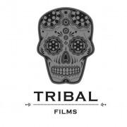 Tribal Film Productions Ltd logo